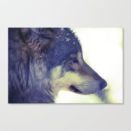 Oil Painting wolf Canvas Print