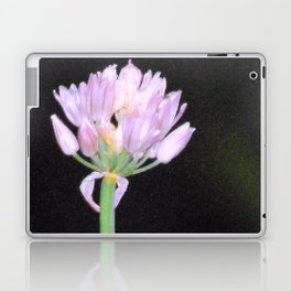 Chives Single Flower Laptop & iPad Skin