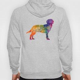 Tyrolean Hound in watercolor Hoody