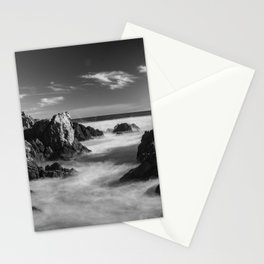 Petrel Cove B & W Stationery Cards