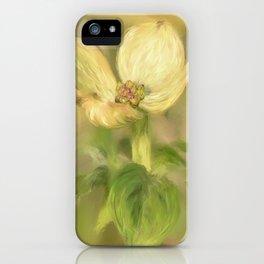 Single Dogwood Blossom In Evening Light iPhone Case