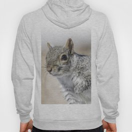 Wet paw Squirrel Hoody