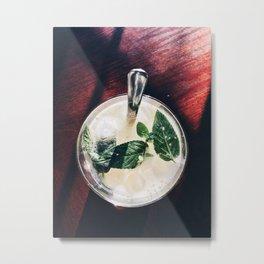 Mojito in Spring Metal Print