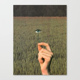 Beyond Knowing Canvas Print