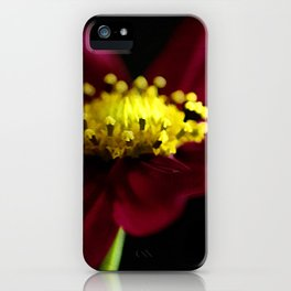 Elegance of a Cosmo iPhone Case