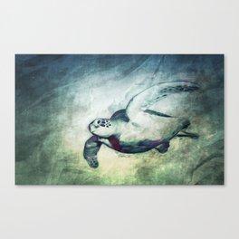 Flying Green Sea Turtle Canvas Print