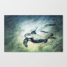 Flying Green Sea Turtle Canvas Print