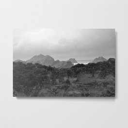 Point Lobos California in Black and White Metal Print