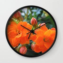 Orange Kalanchoe Wall Clock