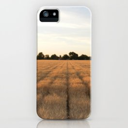Rows iPhone Case