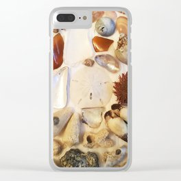 Urchin with Sea Glass and Sand Dollar Clear iPhone Case
