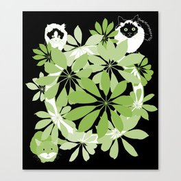 Black, white and green cats Canvas Print