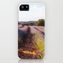 Lavender Fields at Sunset iPhone Case