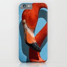American Flamingo Profile Close-up iPhone 6s Slim Case