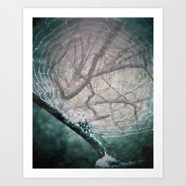 Spider Tree Art Print