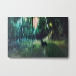 Follow Me ... Metal Print