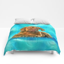 Dogue de Bordeaux Comforters