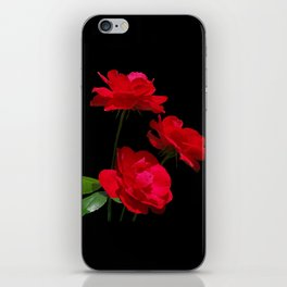 Red roses on black background iPhone Skin