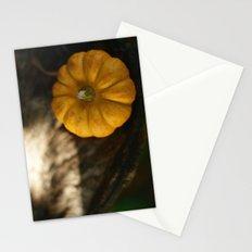 Munchkin Stationery Cards