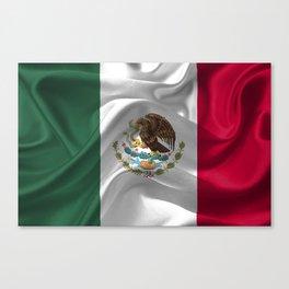 Waving fabic national flag of Mexico Canvas Print