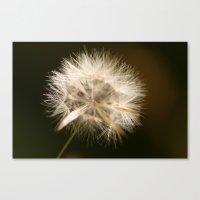 hot fuzz Canvas Prints featuring Fuzz by Dreamweaver