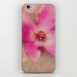Dogwood Blossom Beauty iPhone Skin