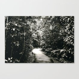scenic route Canvas Print