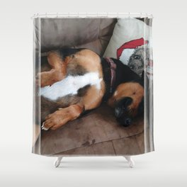 Firo is our family dog. He has a long history for one so young! Shower Curtain