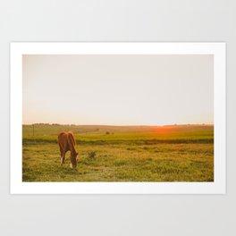 Summer Landscape with Horse Art Print