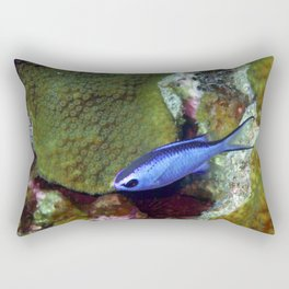Blue Chromis Above Hard Coral Rectangular Pillow