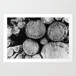 Natural Textures Art Print