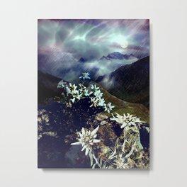 Edelweiss Moonlight Metal Print