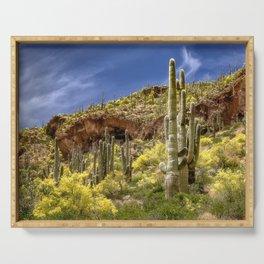 Tonto National Monument, AZ Serving Tray