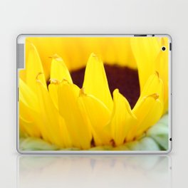 Sunflowers Face the Sun Laptop & iPad Skin