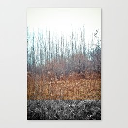 AT Canvas Print