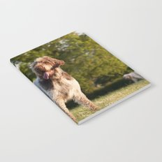 Brown Roan Italian Spinone Dog Notebook