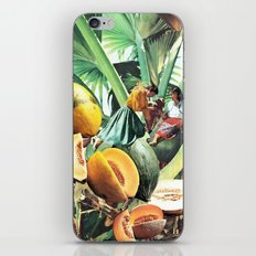 FERTILE CRESCENT iPhone & iPod Skin