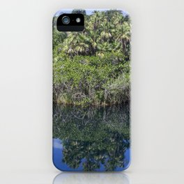 Relaxing Lagoon iPhone Case