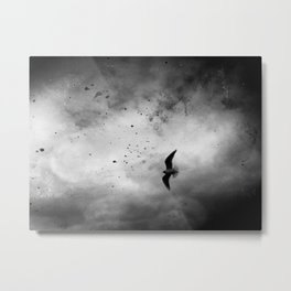 Across The Sky Metal Print