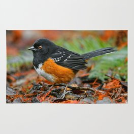 Profile of a Spotted Towhee Rug