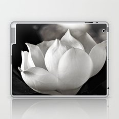 Magnolia Grandiflora Blossom Laptop & iPad Skin