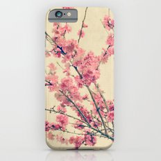 Cherry Pink Spring Blossoms of Ornamental Peach Tree iPhone 6s Slim Case
