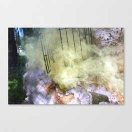 Willow's Gate Canvas Print