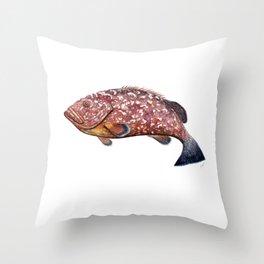 Dusky grouper or merou Throw Pillow