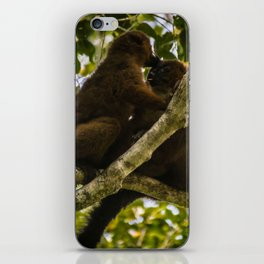 Kisses in the Wild iPhone Skin