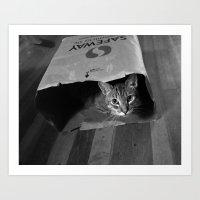 Cleo in a Bag Art Print