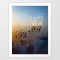 Frost Tracery 2 Art Print
