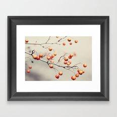 berries in the woods Framed Art Print