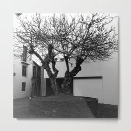 Malaga Metal Print