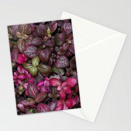 Magic Mosaic - Fittonia albivenis Stationery Cards